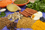 Indian spices, fresh and dried on purple background, market - 102350983