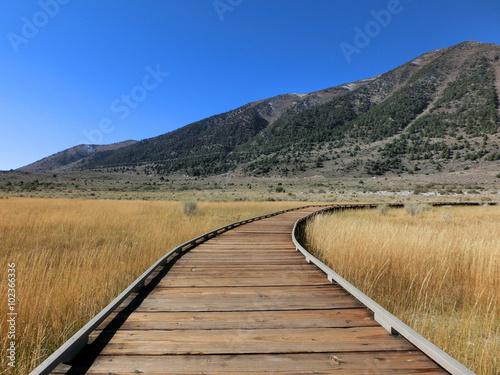 obraz lub plakat Follow wooden boardwalk path through prairie - landscape photo