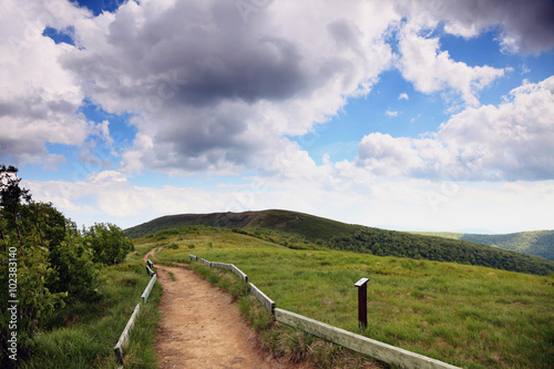 Nature. Road in the mountains. Summer landscape. - 102383140