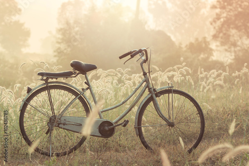bike on a grass flower in the morning - 102430785