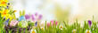 Spring banner with Easter Eggs