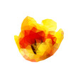Polygon tulip bud on a white background. Vector art.