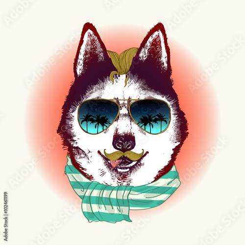 Husky in sunglasses. Fashion animal illustration - 102461199