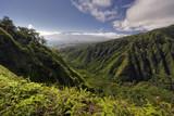 Fototapety Waihee Ridge Trail, over looking Kahului and Haleakala, Maui, Hawaii