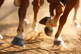 Running Horses Hooves - 102475140