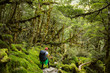 woman hiker with backpack walking in native beech forest on Rout