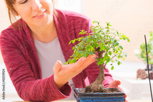Woman with bonsai tree Poster