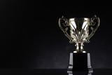 winning trophy championship award - 102641114