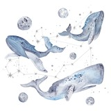 Watercolor Illustration with Whales and Stars