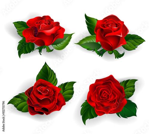 Zdjęcia na płótnie, fototapety, obrazy : Set of Red Roses