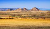 semi-desert landscape