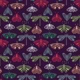 Moth seamless pattern