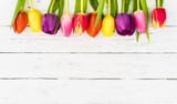 Fototapety Glückwünsche Grußkarte Blumen Frühling Bunte Tulpen