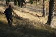 caccia con cane