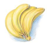A bunch of ripe, yellow bananas - 102838710