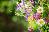 Bouquet of herbs and wild flowers, natural green background, sel