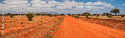 obraz PCV Red road in Tsavo East National Park, Kenya