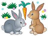 Rabbit topic image 1