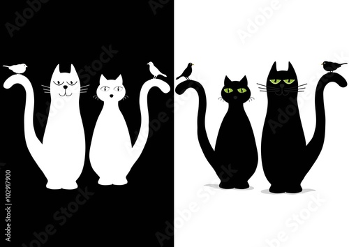Naklejka Black and white cute cats with birds