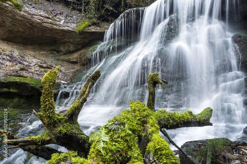 Billede Wasserfall in der Hörschbachschlucht