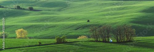 Keuken foto achterwand Olijf Panorama with green field