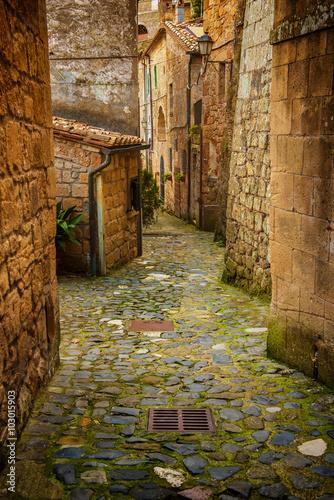 Zdjęcia na płótnie, fototapety na wymiar, obrazy na ścianę : Narrow street of medieval ancient tuff city Sorano with green plants and cobblestone, travel Italy background