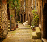Fototapety Narrow street of medieval tuff city Pitigliano with green plants and cobblestone stairs, travel Italy vintage  background