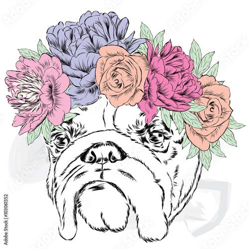 Funny bulldog vector. Bulldog wearing a wreath of flowers. - 103061352
