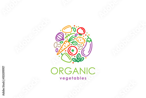 Healthy Organic eco vegetarian food Logo fresh farm vegetables - 103099917