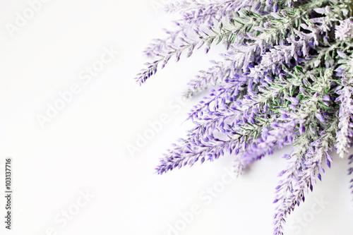 Fotobehang Planten Lavender