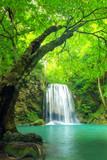 Fototapety Forest waterfall at Erawan waterfall National, Kanchanaburi,Thai
