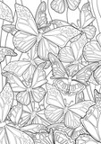 Adult Coloring book – illustration. Tattoo set: Butterflies. Vector illustration.