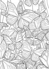 Adult Coloring book – illustration. Tattoo set: Butterflies. Vector illustration.