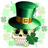 St Patrick Skull Cartoon