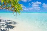 Palm frond on white beach and gorgeous turquoise water at desert One Foot Island, Aitutaki, Cook Islands - 103194181
