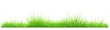 Green grass - 103212133