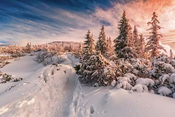Zimowy zachód słońca w Beskidach góry