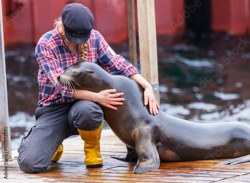 Poster Robbe / seal / walrus