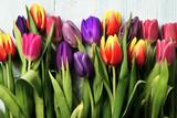 Fototapeta Tulips - tulipany © Tomasz
