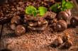 Still life of chocolate pieces