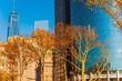 New York City Fall