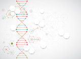 Fototapety Science template, wallpaper or banner with a DNA molecules.