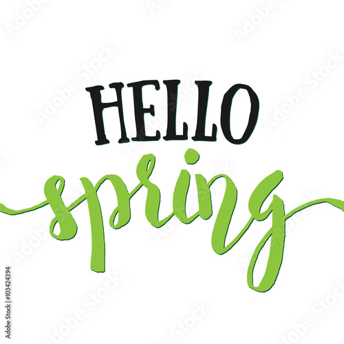 Fototapeta Hello Spring - Hand drawn inspirational quote. Spring Vector isolated lettering