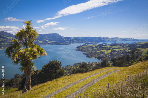 Poster Landschaft rund um Dunedin Otago