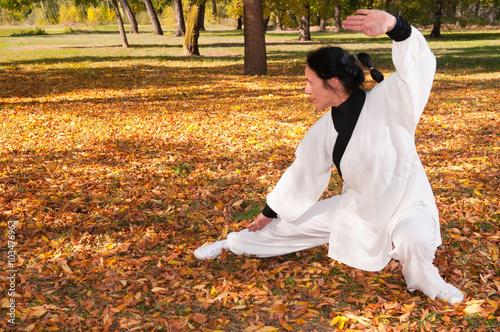 fototapeta na ścianę Kung fu practice