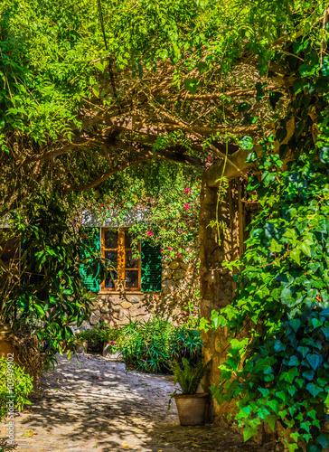 Fototapeta Idyllic view of an romantic garden and window of an mediterranean house
