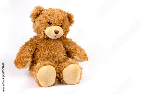 obraz PCV Teddy bear on white background