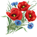 Bunch of red poppy flower, blue cornflakes and hare
