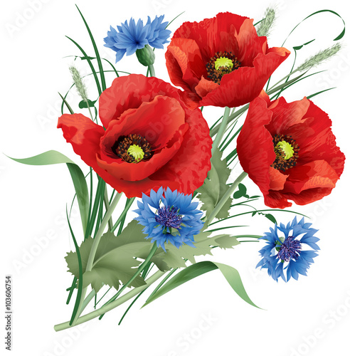 Bunch of red poppy flower, blue cornflakes and hare's-foot clove - 103606754