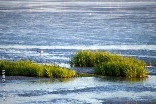 Wattenmeer bei Husum - Nordsee